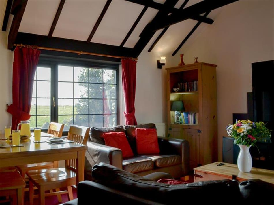 Living room in Hallagenna Farm Cottages - Ladydown Cottage, St Breward, near Bodmin