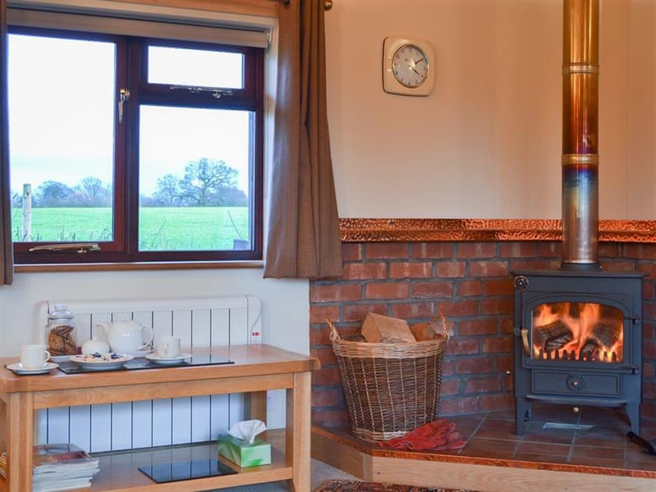 Living room with a wood burner in The Summer House, Brownheath, near Wem