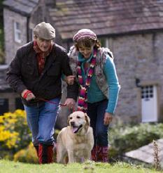 Pet friendly holiday cottages which sleep 3