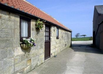 Abbey View Cottage, Robin Hood'S Bay, Whitby