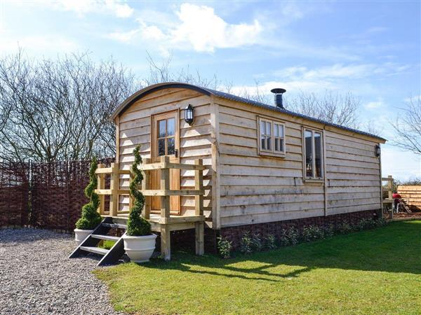 Ashwood Shepherds Hut, Wichenford, near Worcester, Worcestershire