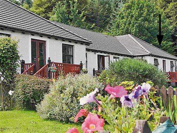 Brenfield Croft Cottage, Ardrishaig, nr. Argyll, Scotland with hot tub