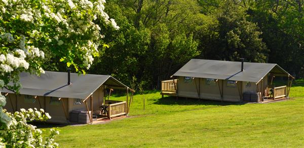 Hay-on-the-Farm Safari Tents, Herefordshire