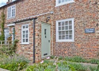 Pear Tree Cottage, Great Ouseburn, Vale of York & Yorkshire Wolds