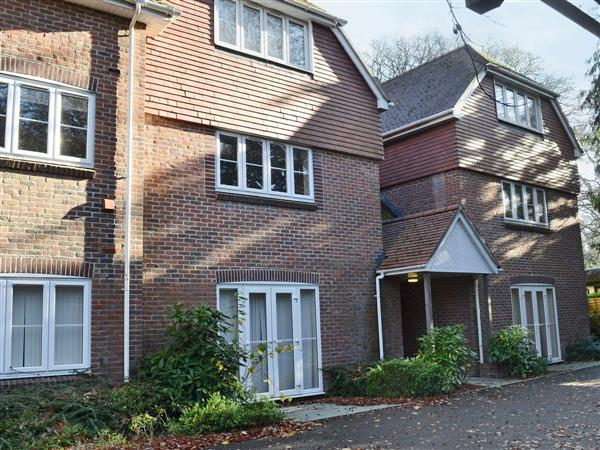 Room and Roof Serviced Apartments - Mayflower Apartment 12, Hampshire