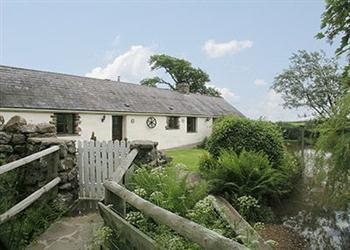 Tankey Lake Livery - Bluebell Cottage, West Glamorgan