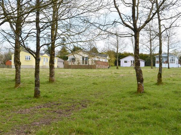Thornbury Holiday Park - Willow, Woodacott, near Holsworthy, Devon, South West England