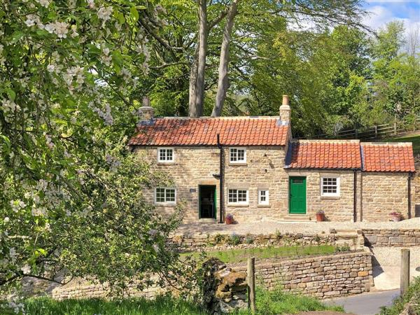 Tiggywinkle Cottage, Hawnby, near Helmsley, Yorkshire, North Yorkshire with hot tub