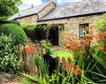 Wagtail Cottage in  - East Taphouse
