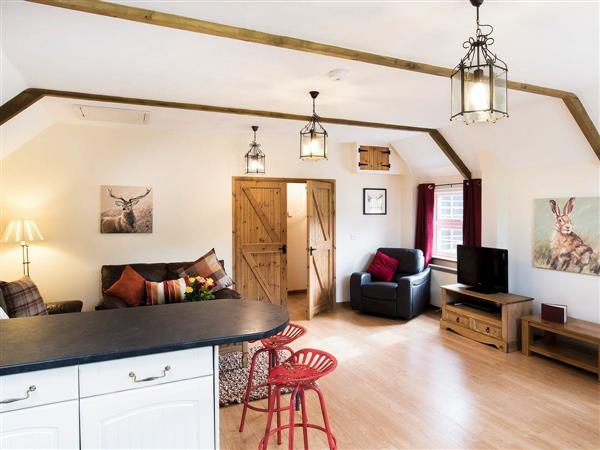 Wooladon Holiday Cottages - Pheasant Barn, Lifton, near Launceston, Devon, South West England