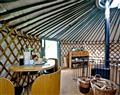 Relax at Yurt 6 - East Thorne Farm; Bude; Cornwall