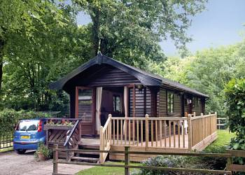 Have a great lodge holiday at Lime Tree Park