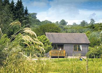 Self catering heaven at Queenshill Lodges