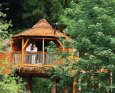 Sherwood Forest Lodges in Mansfield - Sherwood Forest, Nr Edwinstowe