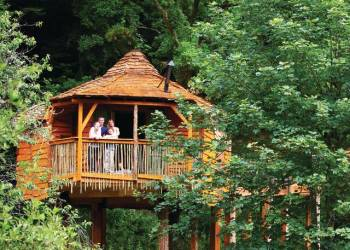 Sherwood Forest Lodges, Mansfield