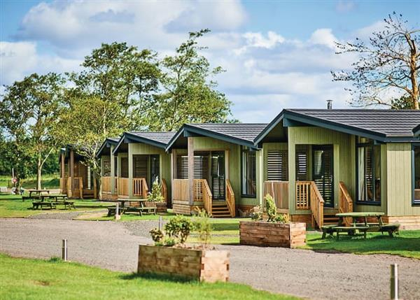 Fantastic lodges at Silverwood Lodges