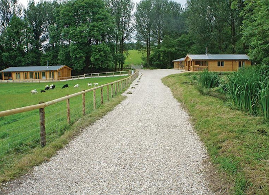 The setting of Peckmoor Farm Lodges in Dorset